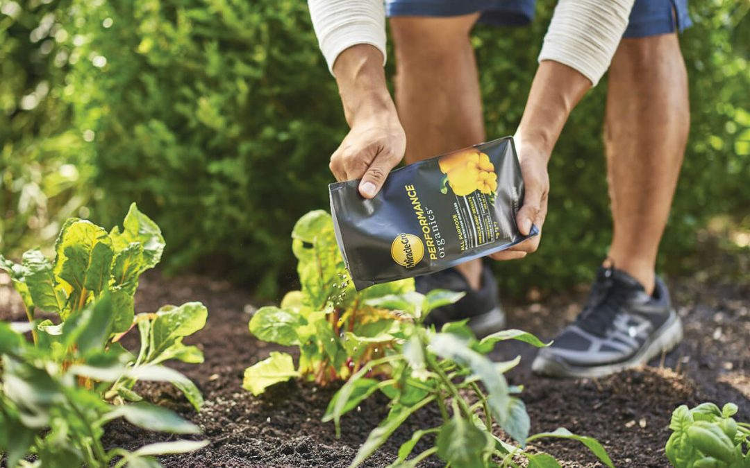 How to take your gardening to the next level
